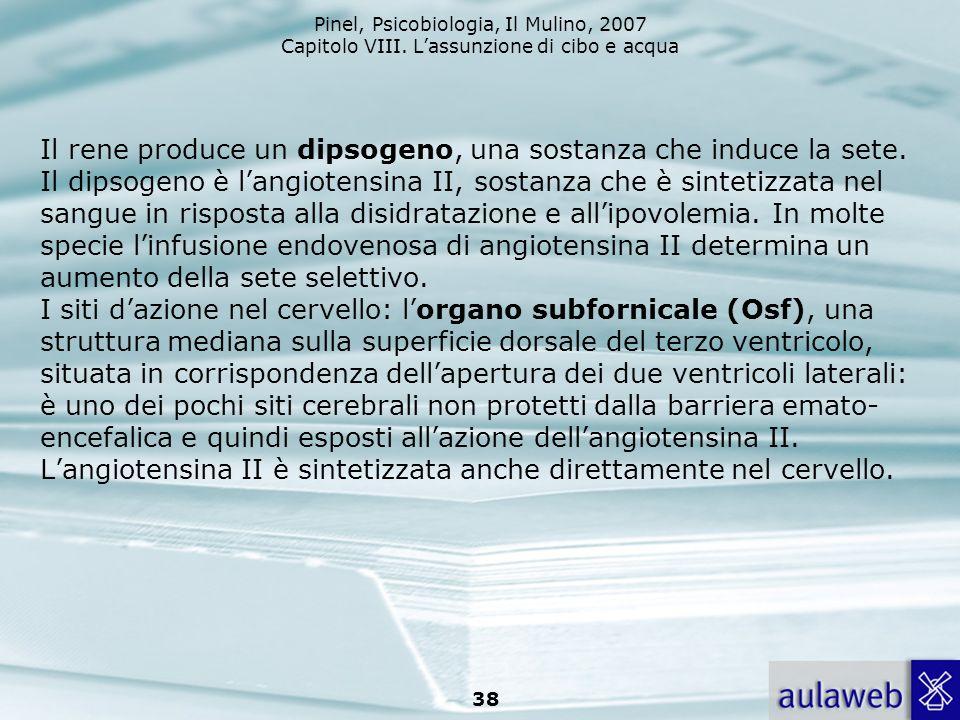 Pinel, Psicobiologia, Il Mulino, 2007 Capitolo VIII. Lassunzione di cibo e acqua 38 Il rene produce un dipsogeno, una sostanza che induce la sete. Il