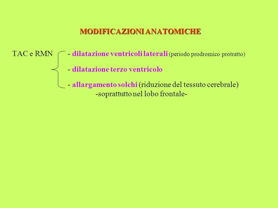 MODIFICAZIONI ANATOMICHE TAC e RMN- dilatazione ventricoli laterali (periodo prodromico protratto) - dilatazione terzo ventricolo - allargamento solch