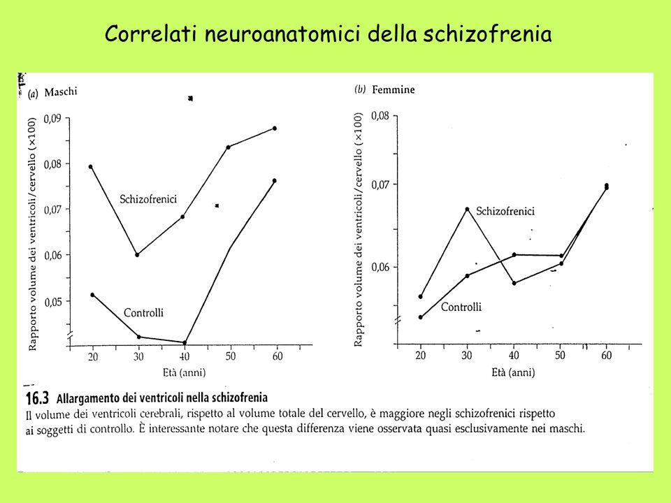 Correlati neuroanatomici della schizofrenia