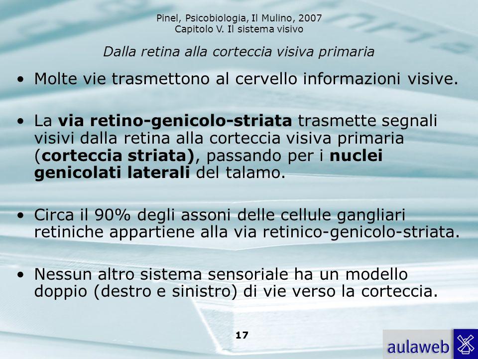 Pinel, Psicobiologia, Il Mulino, 2007 Capitolo V. Il sistema visivo 17 Dalla retina alla corteccia visiva primaria Molte vie trasmettono al cervello i