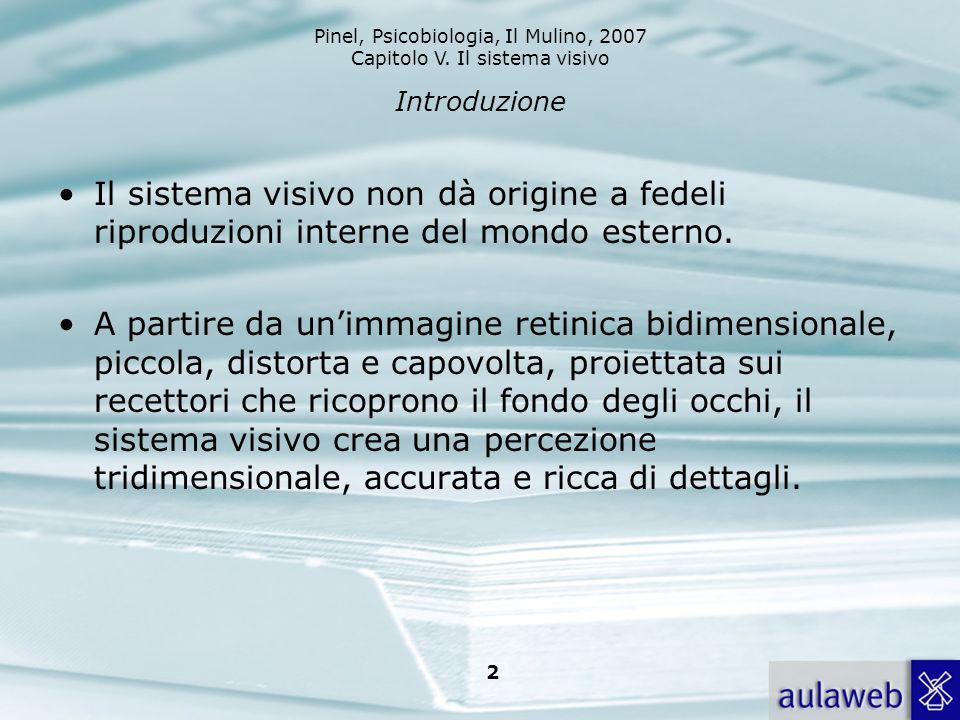 Pinel, Psicobiologia, Il Mulino, 2007 Capitolo V. Il sistema visivo 2 Introduzione Il sistema visivo non dà origine a fedeli riproduzioni interne del