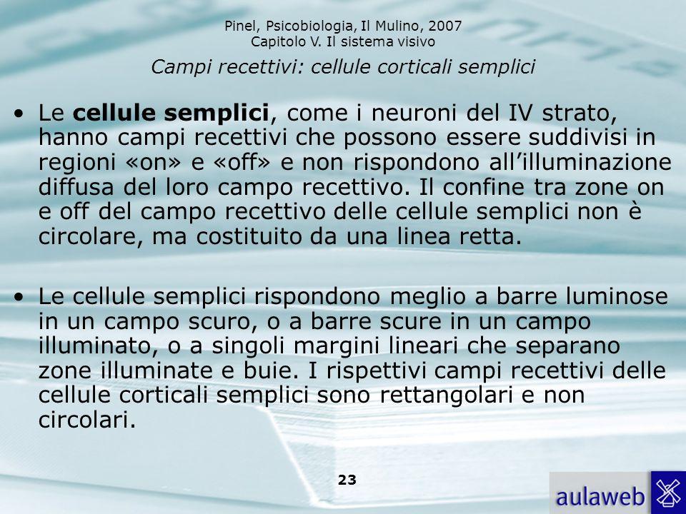 Pinel, Psicobiologia, Il Mulino, 2007 Capitolo V. Il sistema visivo 23 Campi recettivi: cellule corticali semplici Le cellule semplici, come i neuroni