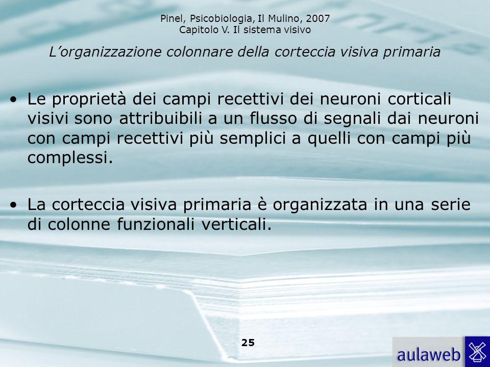 Pinel, Psicobiologia, Il Mulino, 2007 Capitolo V. Il sistema visivo 25 Lorganizzazione colonnare della corteccia visiva primaria Le proprietà dei camp