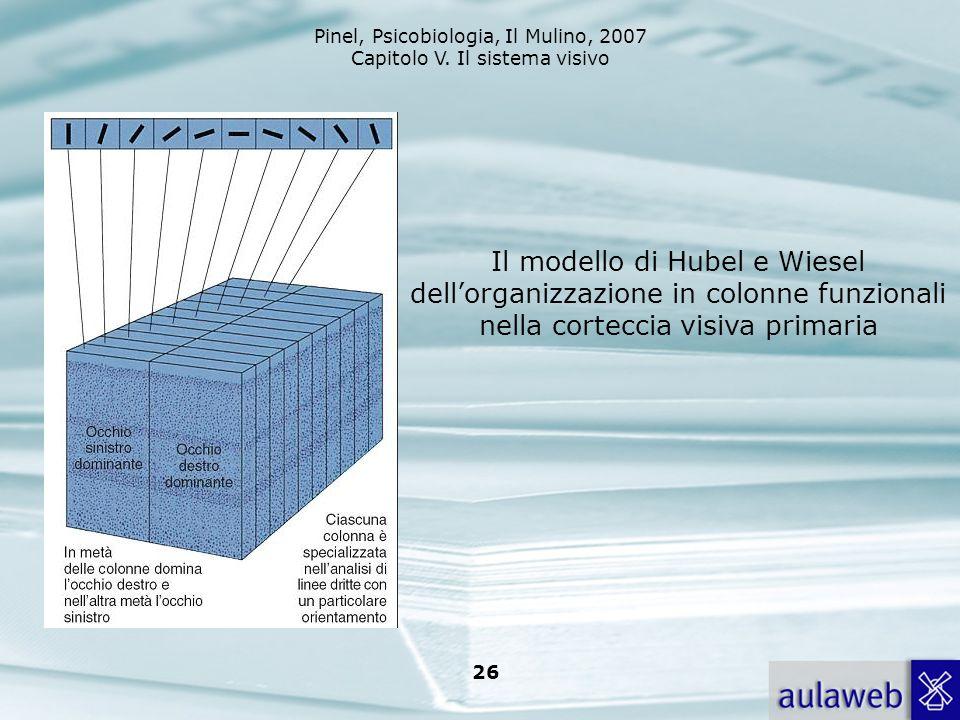 Pinel, Psicobiologia, Il Mulino, 2007 Capitolo V. Il sistema visivo 26 Il modello di Hubel e Wiesel dellorganizzazione in colonne funzionali nella cor