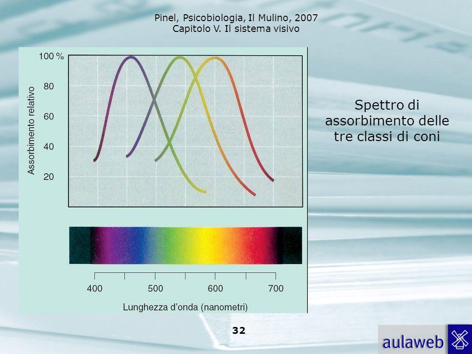 Pinel, Psicobiologia, Il Mulino, 2007 Capitolo V. Il sistema visivo 32 Spettro di assorbimento delle tre classi di coni