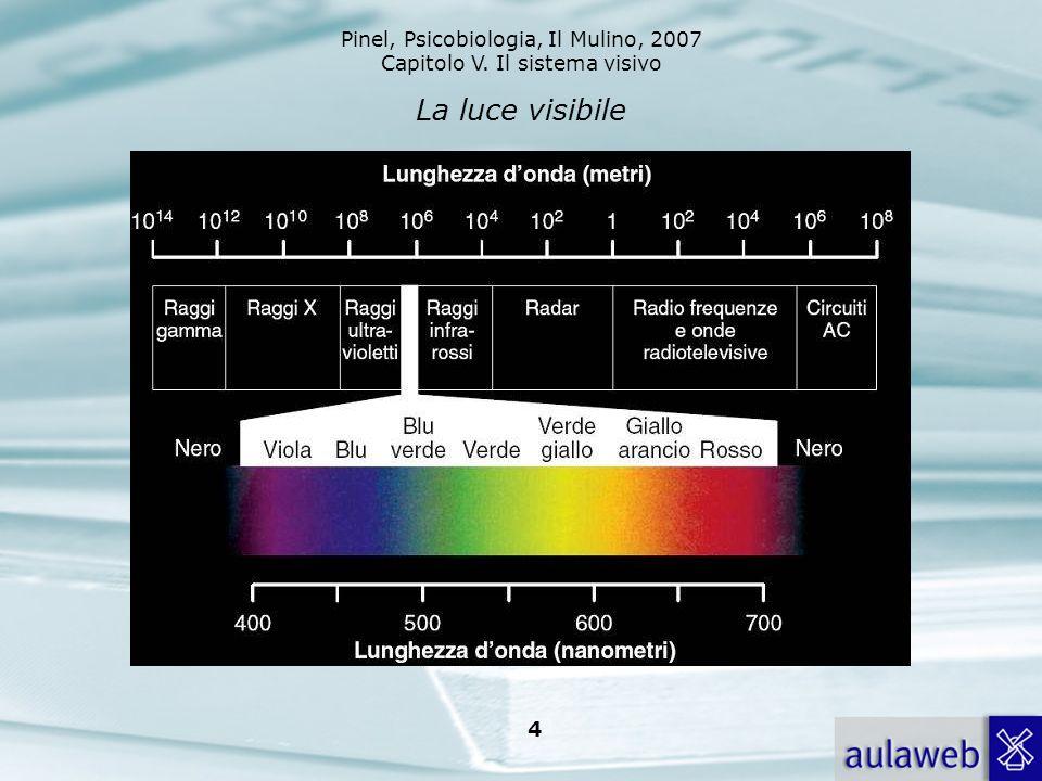 Pinel, Psicobiologia, Il Mulino, 2007 Capitolo V. Il sistema visivo 4 La luce visibile