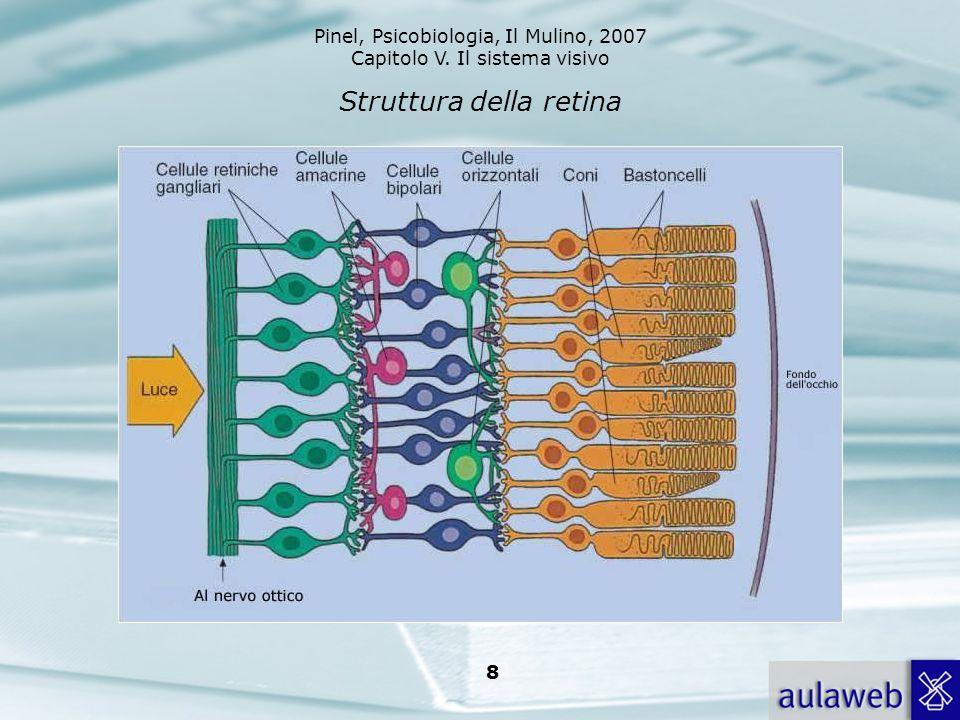 Pinel, Psicobiologia, Il Mulino, 2007 Capitolo V. Il sistema visivo 8 Struttura della retina