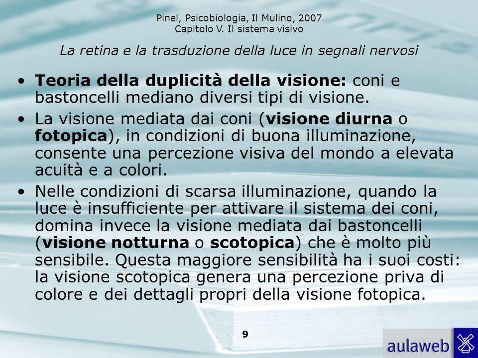 Pinel, Psicobiologia, Il Mulino, 2007 Capitolo V. Il sistema visivo 9 La retina e la trasduzione della luce in segnali nervosi Teoria della duplicità