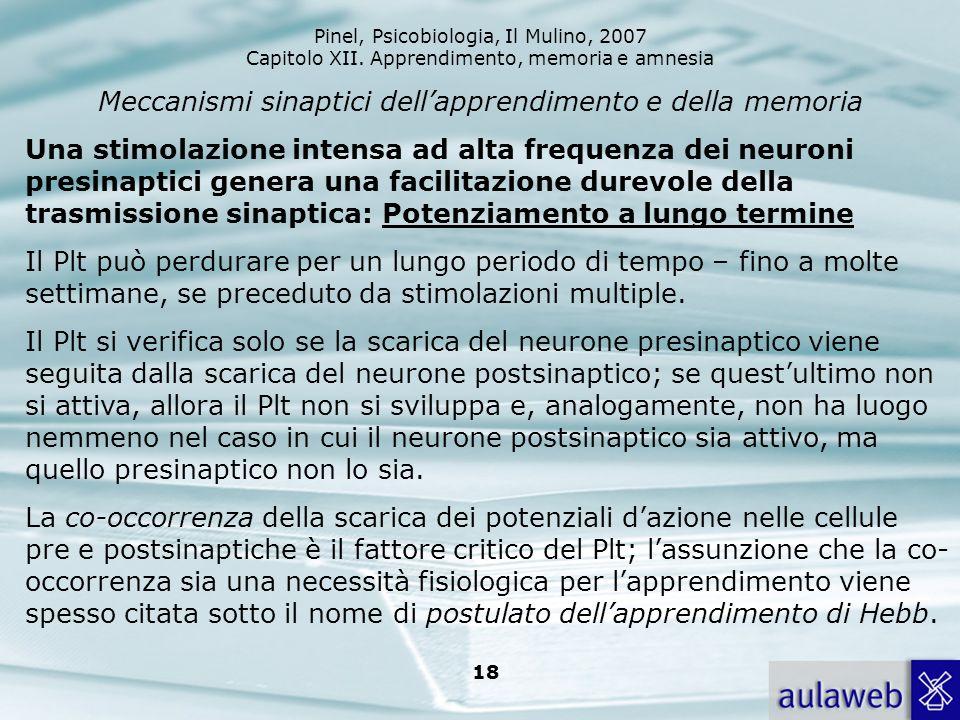 Pinel, Psicobiologia, Il Mulino, 2007 Capitolo XII. Apprendimento, memoria e amnesia 18 Meccanismi sinaptici dellapprendimento e della memoria Una sti