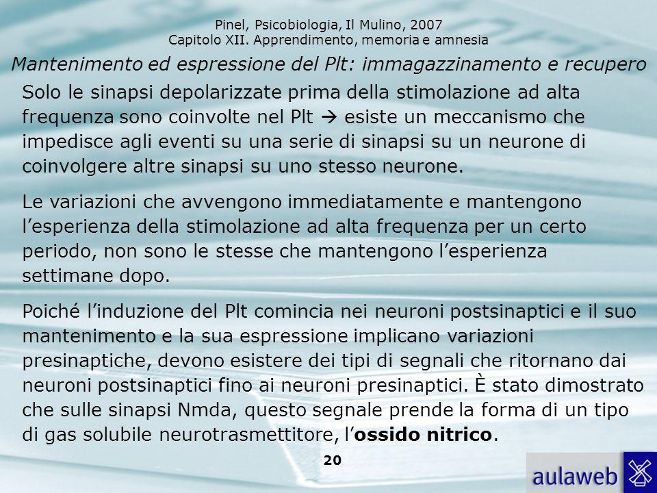 Pinel, Psicobiologia, Il Mulino, 2007 Capitolo XII. Apprendimento, memoria e amnesia 20 Mantenimento ed espressione del Plt: immagazzinamento e recupe