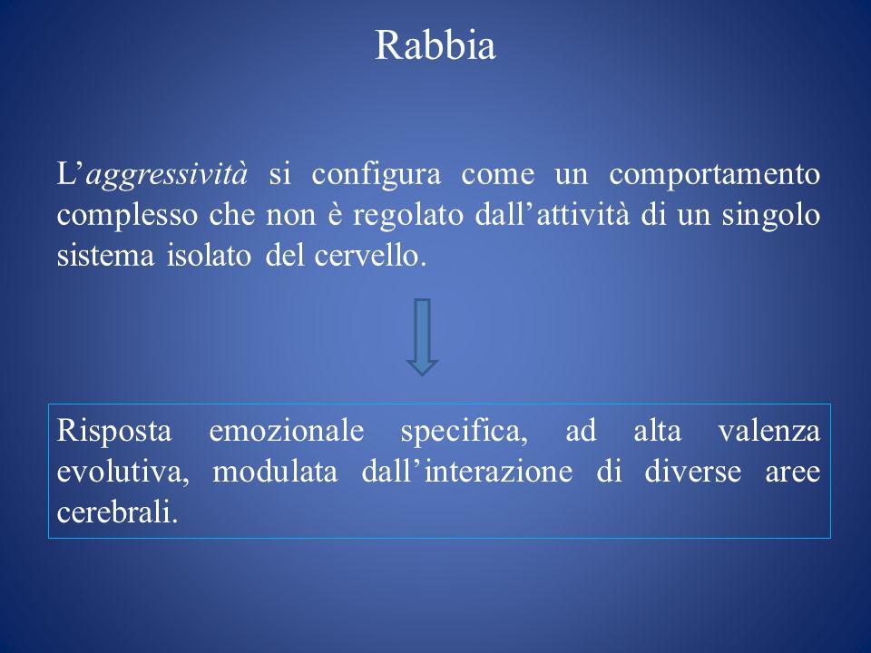 Rabbia Laggressività si configura come un comportamento complesso che non è regolato dallattività di un singolo sistema isolato del cervello. Risposta