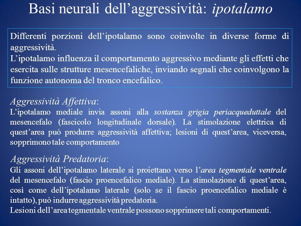 Basi neurali dellaggressività: ipotalamo Differenti porzioni dellipotalamo sono coinvolte in diverse forme di aggressività. Lipotalamo influenza il co