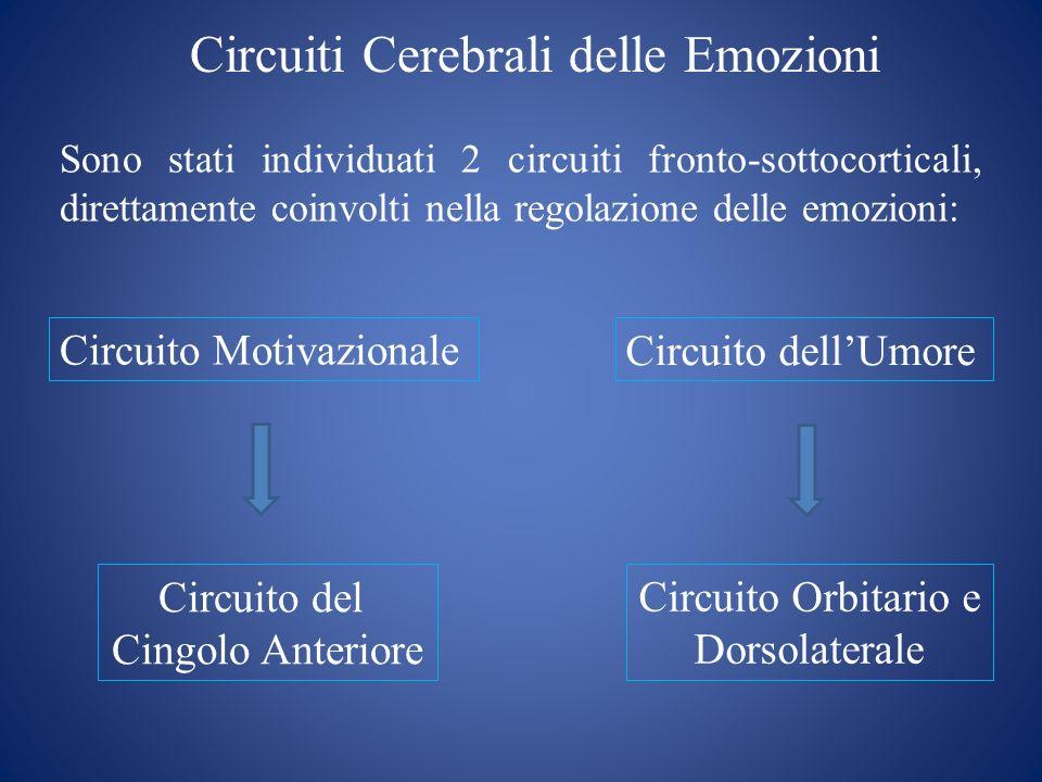 Circuiti Cerebrali delle Emozioni Circuito Motivazionale Circuito dellUmore Sono stati individuati 2 circuiti fronto-sottocorticali, direttamente coin
