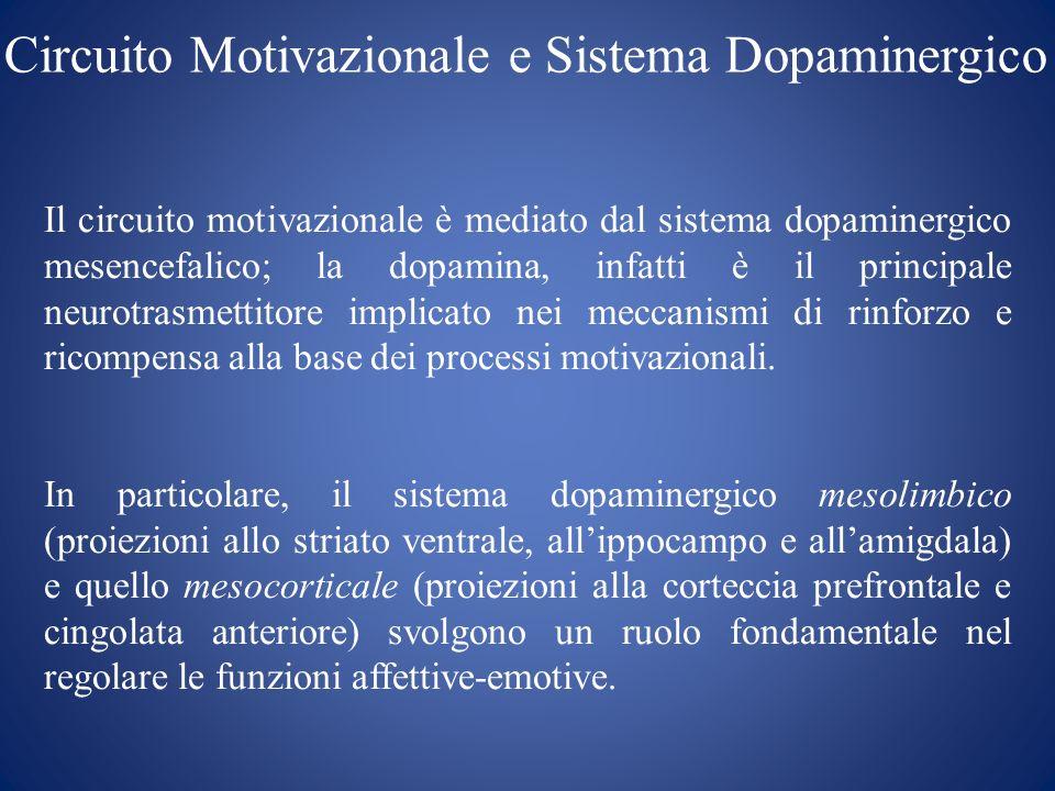 Circuito Motivazionale e Sistema Dopaminergico Il circuito motivazionale è mediato dal sistema dopaminergico mesencefalico; la dopamina, infatti è il