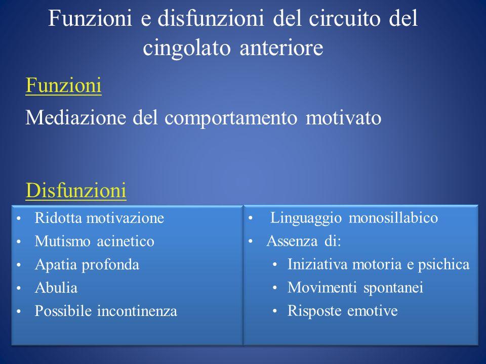Disturbi della Motivazione: caratteristiche generali Un disturbo della sfera motivazionale implica, in generale, uninerzia ad agire.
