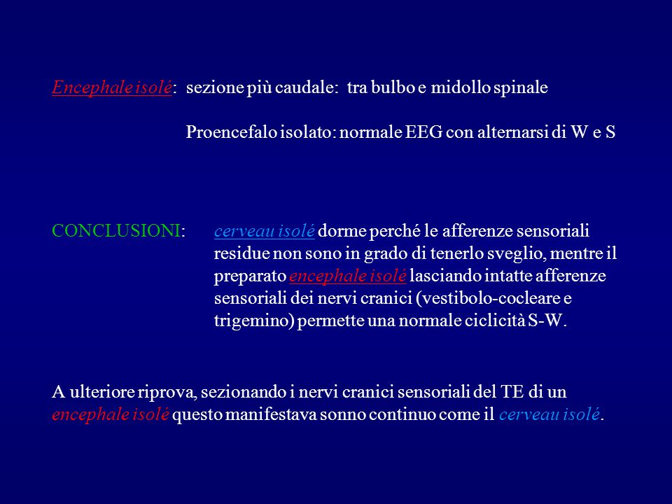 MORUZZI e MAGOUN: lesioni parziali del TE (non complete come nel caso di Bremer).