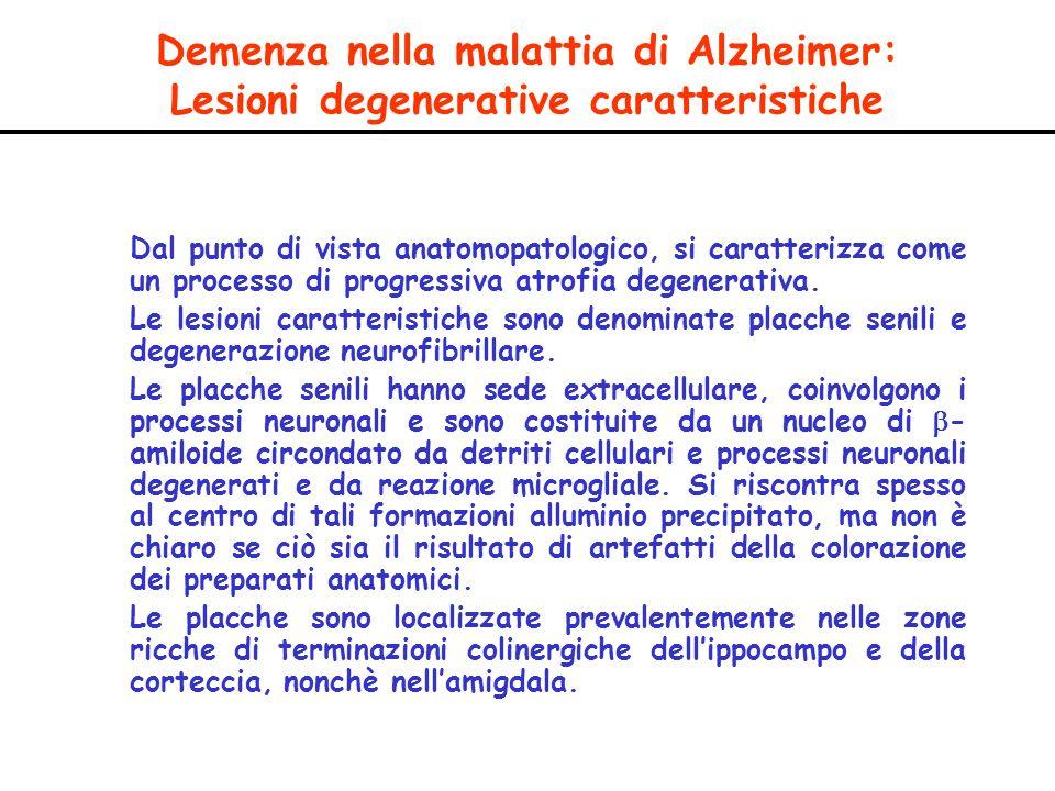 Demenza nella malattia di Alzheimer: Lesioni degenerative caratteristiche Dal punto di vista anatomopatologico, si caratterizza come un processo di pr