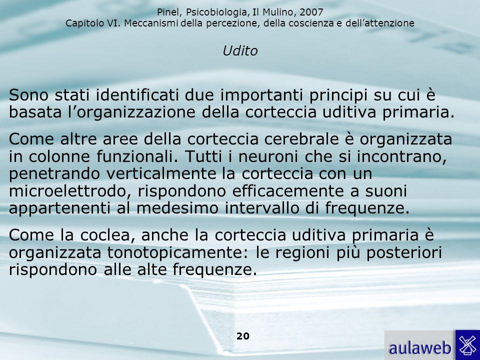 Pinel, Psicobiologia, Il Mulino, 2007 Capitolo VI. Meccanismi della percezione, della coscienza e dellattenzione 20 Udito Sono stati identificati due