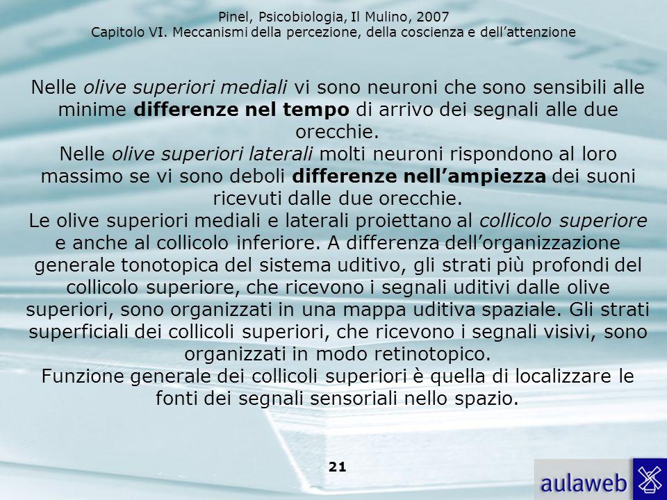 Pinel, Psicobiologia, Il Mulino, 2007 Capitolo VI. Meccanismi della percezione, della coscienza e dellattenzione 21 Nelle olive superiori mediali vi s
