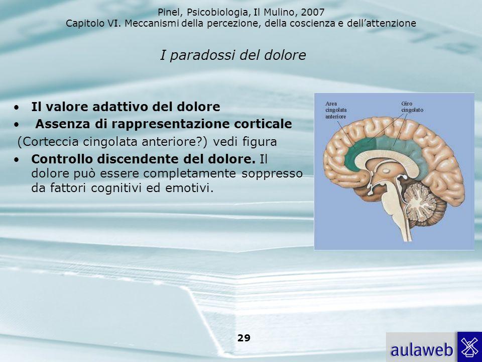 Pinel, Psicobiologia, Il Mulino, 2007 Capitolo VI. Meccanismi della percezione, della coscienza e dellattenzione 29 I paradossi del dolore Il valore a