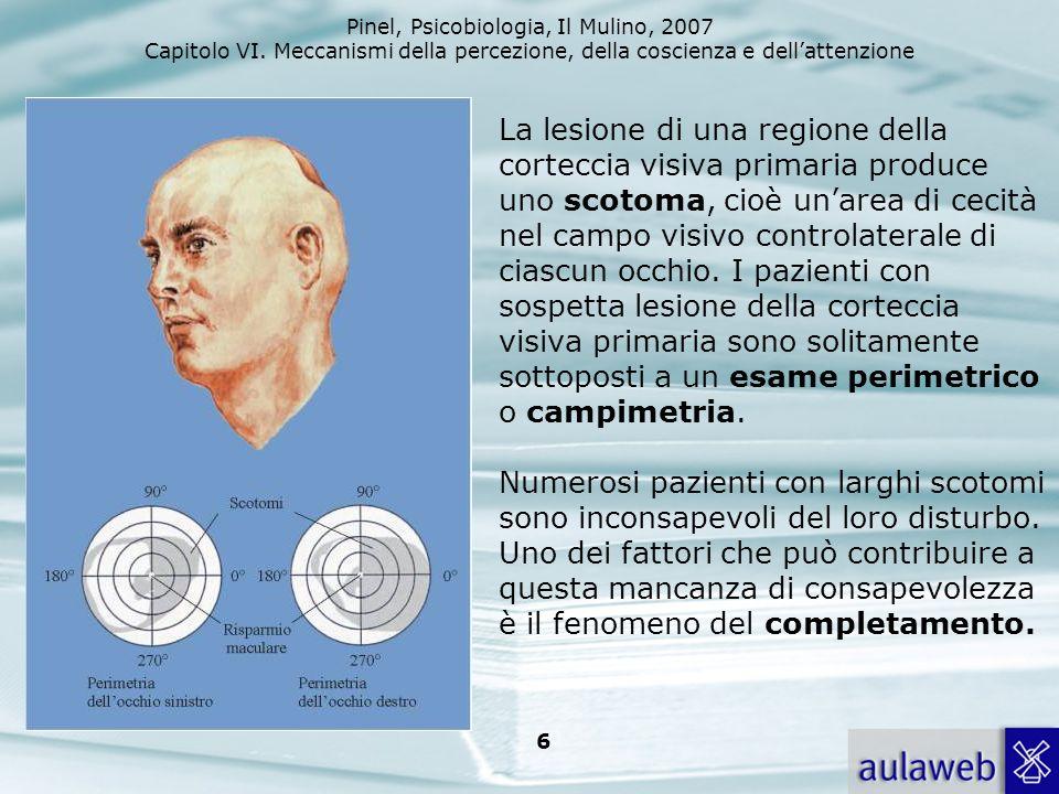 Pinel, Psicobiologia, Il Mulino, 2007 Capitolo VI. Meccanismi della percezione, della coscienza e dellattenzione 6 La lesione di una regione della cor