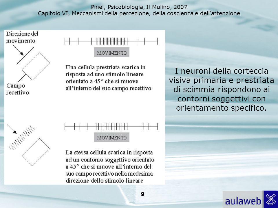 Pinel, Psicobiologia, Il Mulino, 2007 Capitolo VI. Meccanismi della percezione, della coscienza e dellattenzione 9 I neuroni della corteccia visiva pr
