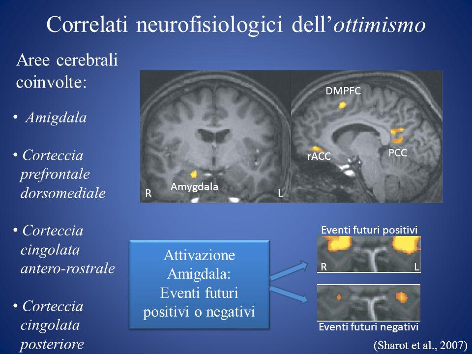 Correlati neurofisiologici dellottimismo Amygdala DMPFC rACC PCC Amigdala Corteccia prefrontale dorsomediale Corteccia cingolata antero-rostrale Corte