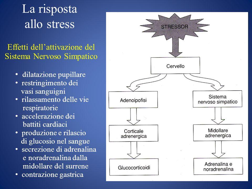 La risposta allo stress Effetti dellattivazione del Sistema Nervoso Simpatico dilatazione pupillare restringimento dei vasi sanguigni rilassamento del