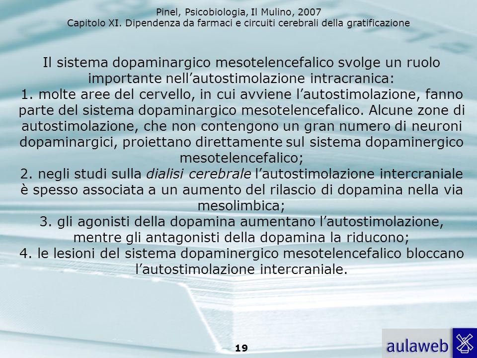 Pinel, Psicobiologia, Il Mulino, 2007 Capitolo XI. Dipendenza da farmaci e circuiti cerebrali della gratificazione 19 Il sistema dopaminargico mesotel