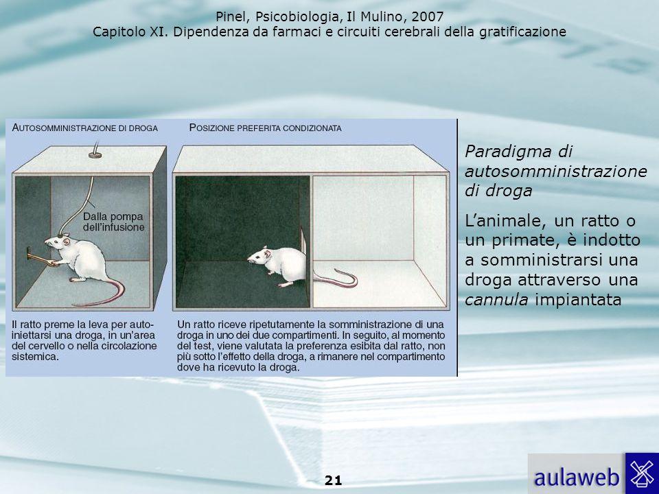 Pinel, Psicobiologia, Il Mulino, 2007 Capitolo XI. Dipendenza da farmaci e circuiti cerebrali della gratificazione 21 Paradigma di autosomministrazion