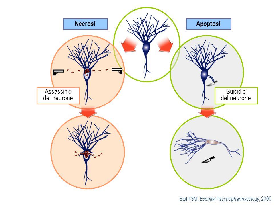 Stahl SM, Esential Psychopharmacology, 2000 Apoptosi Necrosi Suicidio del neurone Assassinio del neurone