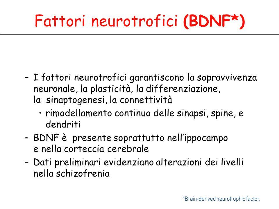 Fattori neurotrofici (BDNF*) –I fattori neurotrofici garantiscono la sopravvivenza neuronale, la plasticità, la differenziazione, la sinaptogenesi, la connettività rimodellamento continuo delle sinapsi, spine, e dendriti –BDNF è presente soprattutto nellippocampo e nella corteccia cerebrale –Dati preliminari evidenziano alterazioni dei livelli nella schizofrenia *Brain-derived neurotrophic factor.