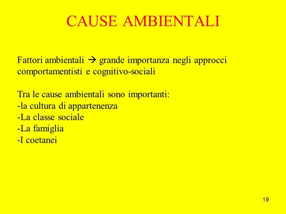 19 CAUSE AMBIENTALI Fattori ambientali grande importanza negli approcci comportamentisti e cognitivo-sociali Tra le cause ambientali sono importanti: -la cultura di appartenenza -La classe sociale -La famiglia -I coetanei