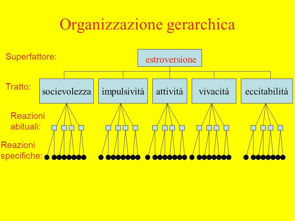 Organizzazione gerarchica estroversione socievolezzaimpulsivitàattivitàvivacitàeccitabilità Superfattore: Tratto: Reazioni abituali: Reazioni specifiche: