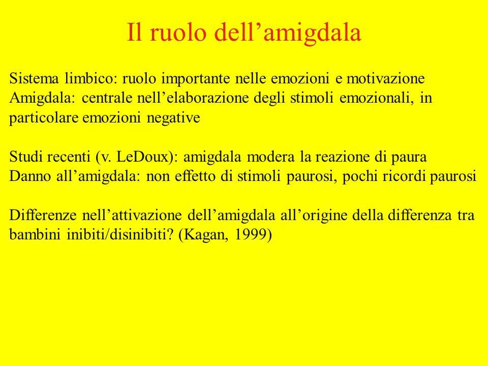 Sistema limbico: ruolo importante nelle emozioni e motivazione Amigdala: centrale nellelaborazione degli stimoli emozionali, in particolare emozioni negative Studi recenti (v.