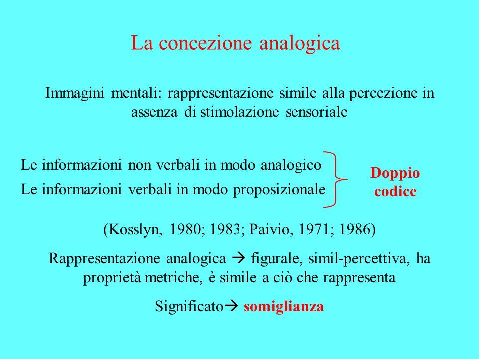 La concezione analogica Immagini mentali: rappresentazione simile alla percezione in assenza di stimolazione sensoriale Le informazioni non verbali in