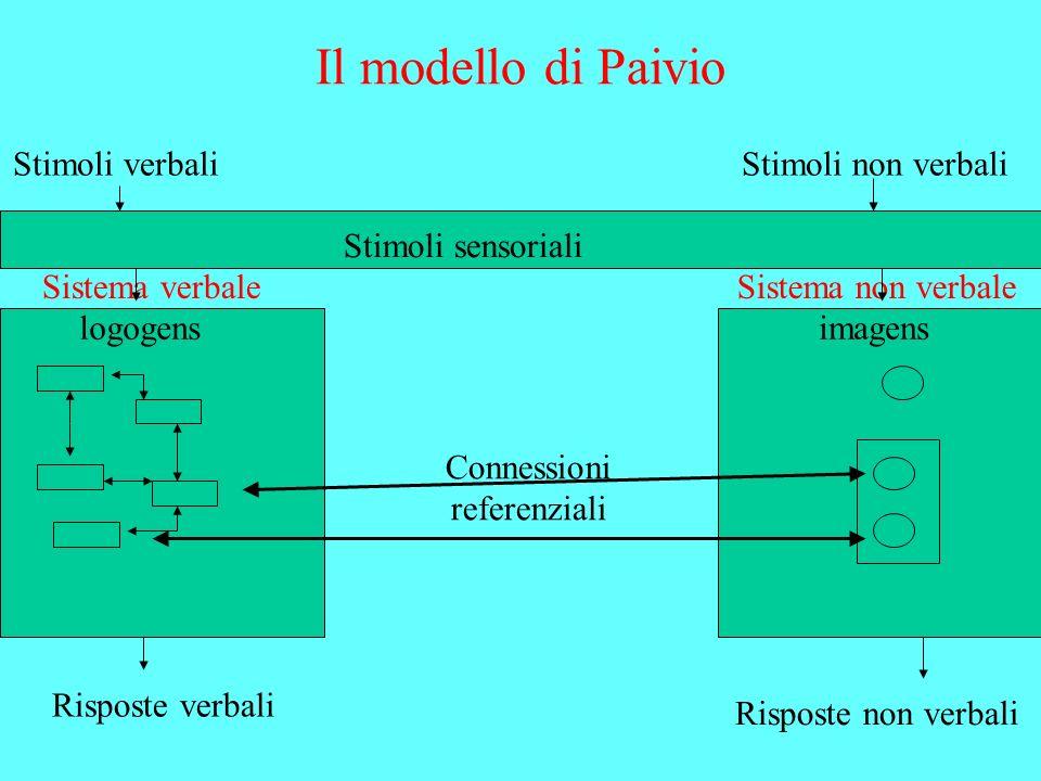 Il modello di Paivio Stimoli verbaliStimoli non verbali Stimoli sensoriali logogensimagens Sistema verbaleSistema non verbale Connessioni referenziali