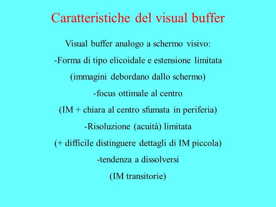 Caratteristiche del visual buffer Visual buffer analogo a schermo visivo: -Forma di tipo elicoidale e estensione limitata (immagini debordano dallo sc