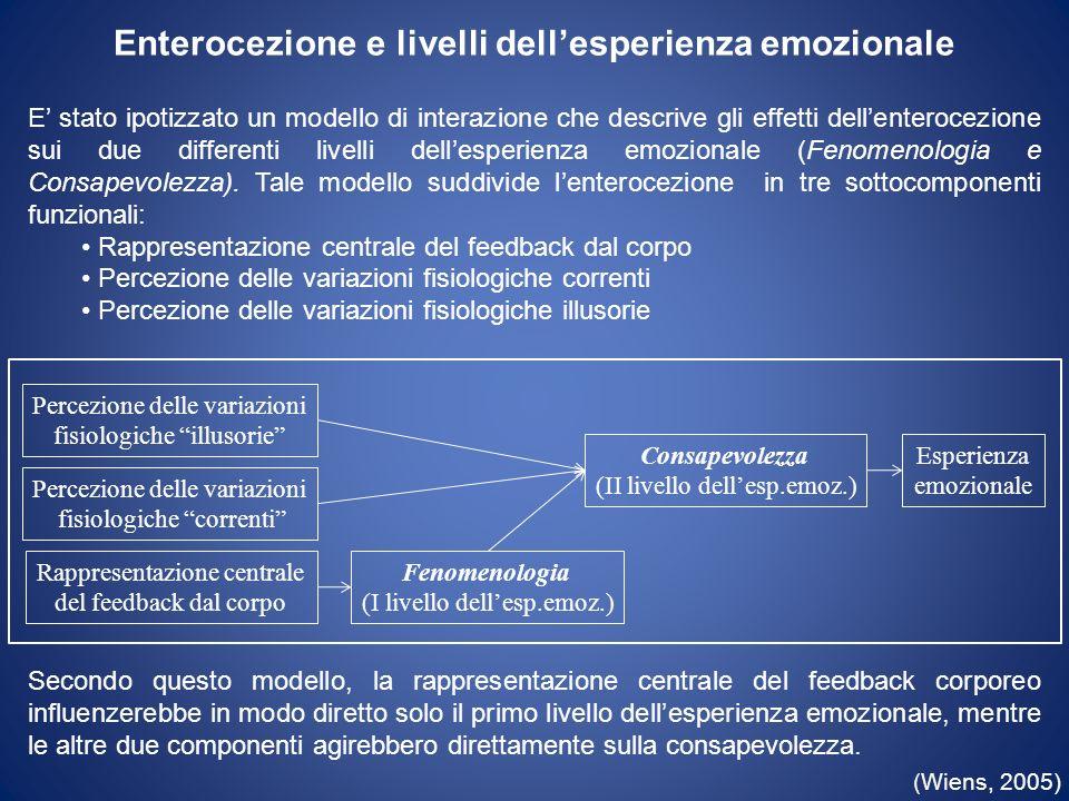 Enterocezione e livelli dellesperienza emozionale E stato ipotizzato un modello di interazione che descrive gli effetti dellenterocezione sui due diff