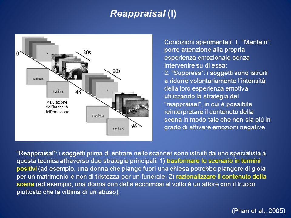 (Phan et al., 2005) Reappraisal (I) Valutazione dellintensità dellemozione Condizioni sperimentali: 1. Mantain: porre attenzione alla propria esperien