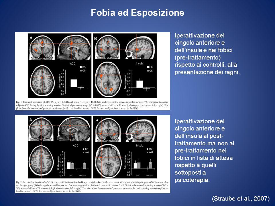 (Straube et al., 2007) Iperattivazione del cingolo anteriore e dellinsula e nei fobici (pre-trattamento) rispetto ai controlli, alla presentazione dei