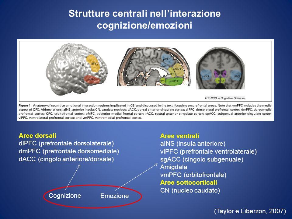 Strutture centrali nellinterazione cognizione/emozioni (Taylor e Liberzon, 2007) Aree dorsali dlPFC (prefrontale dorsolaterale) dmPFC (prefrontale dor