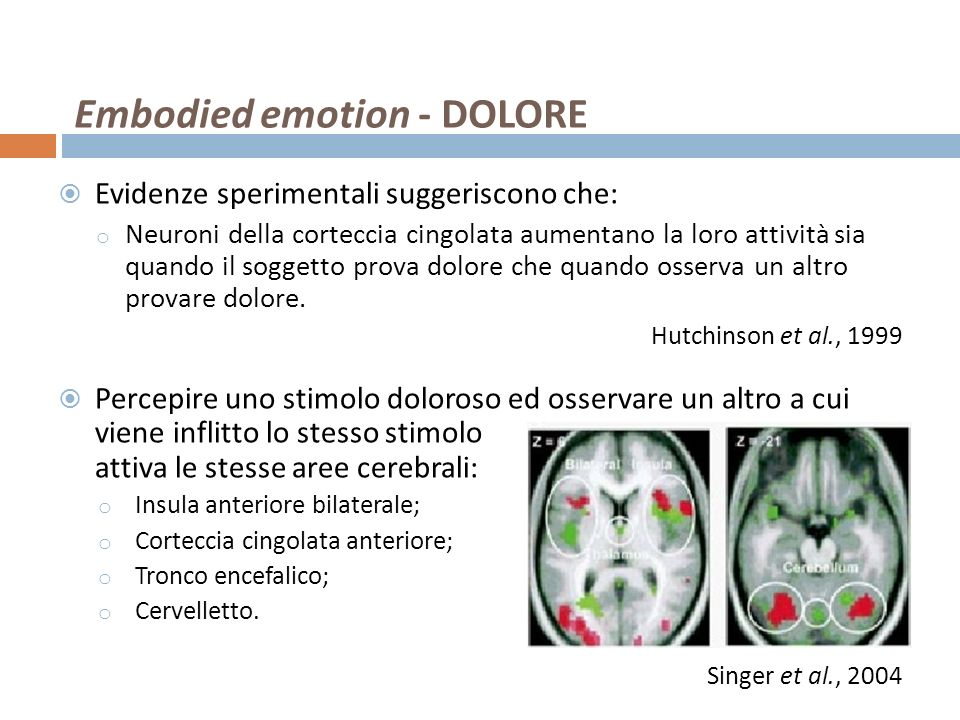 Embodied emotion - DOLORE Evidenze sperimentali suggeriscono che: o Neuroni della corteccia cingolata aumentano la loro attività sia quando il soggett