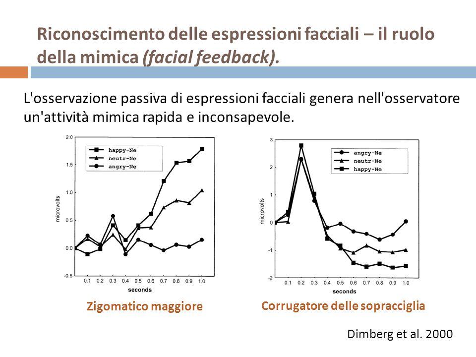 L'osservazione passiva di espressioni facciali genera nell'osservatore un'attività mimica rapida e inconsapevole. Zigomatico maggiore Corrugatore dell