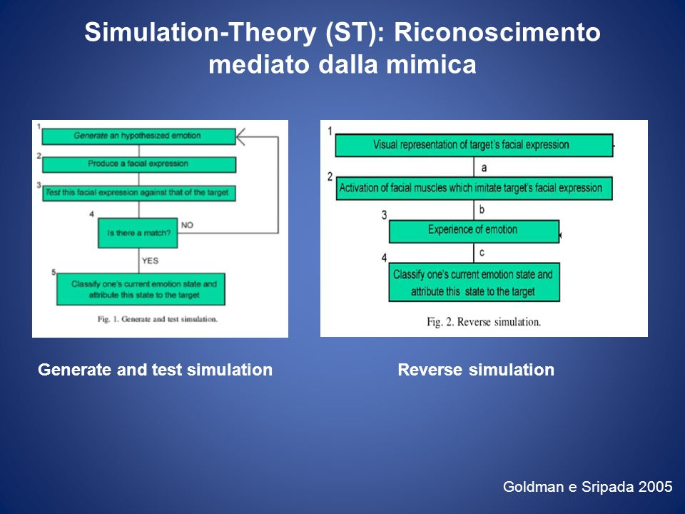 Simulation-Theory (ST): Riconoscimento mediato dalla mimica Goldman e Sripada 2005 Generate and test simulationReverse simulation