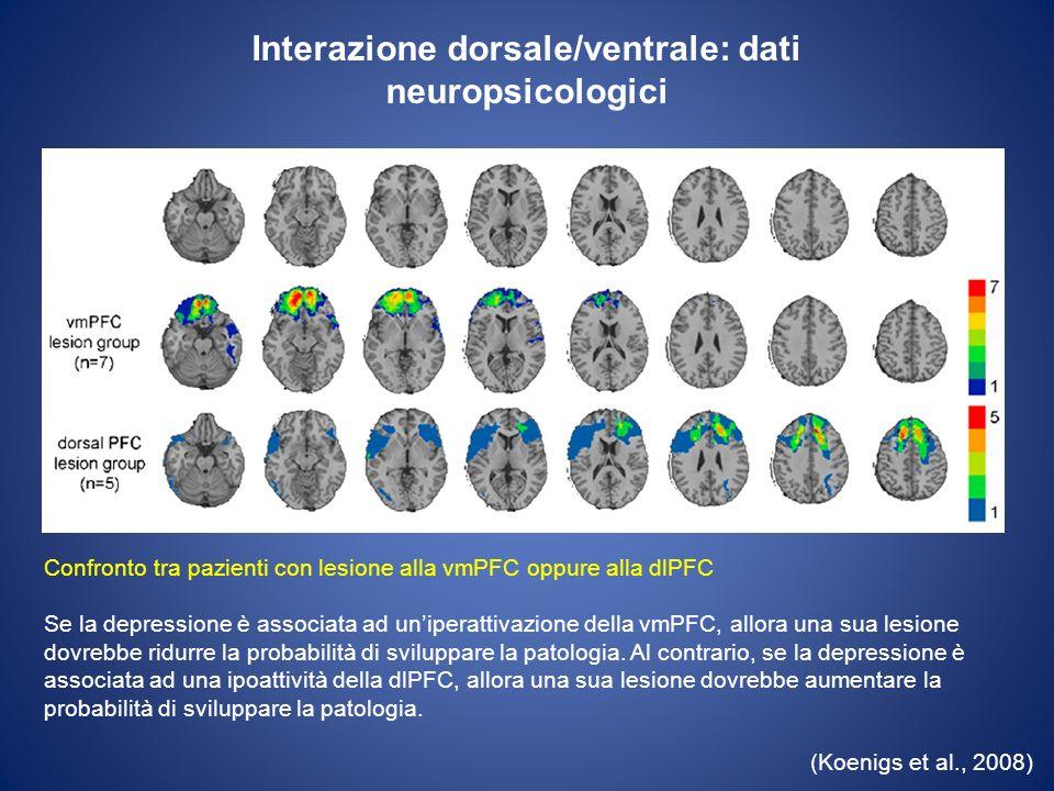 Interazione dorsale/ventrale: dati neuropsicologici (Koenigs et al., 2008) I risultati hanno confermato la presenza di depressione (misurata con scale self- report) significativamente minore nel gruppo dei pazienti con lesione alla vmPFC rispetto ai pazienti con lesione alla dlPFC.