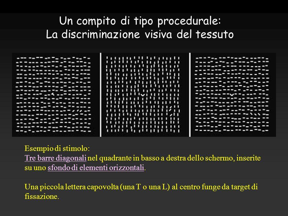 Un compito di tipo procedurale: La discriminazione visiva del tessuto Esempio di stimolo: Tre barre diagonali nel quadrante in basso a destra dello sc