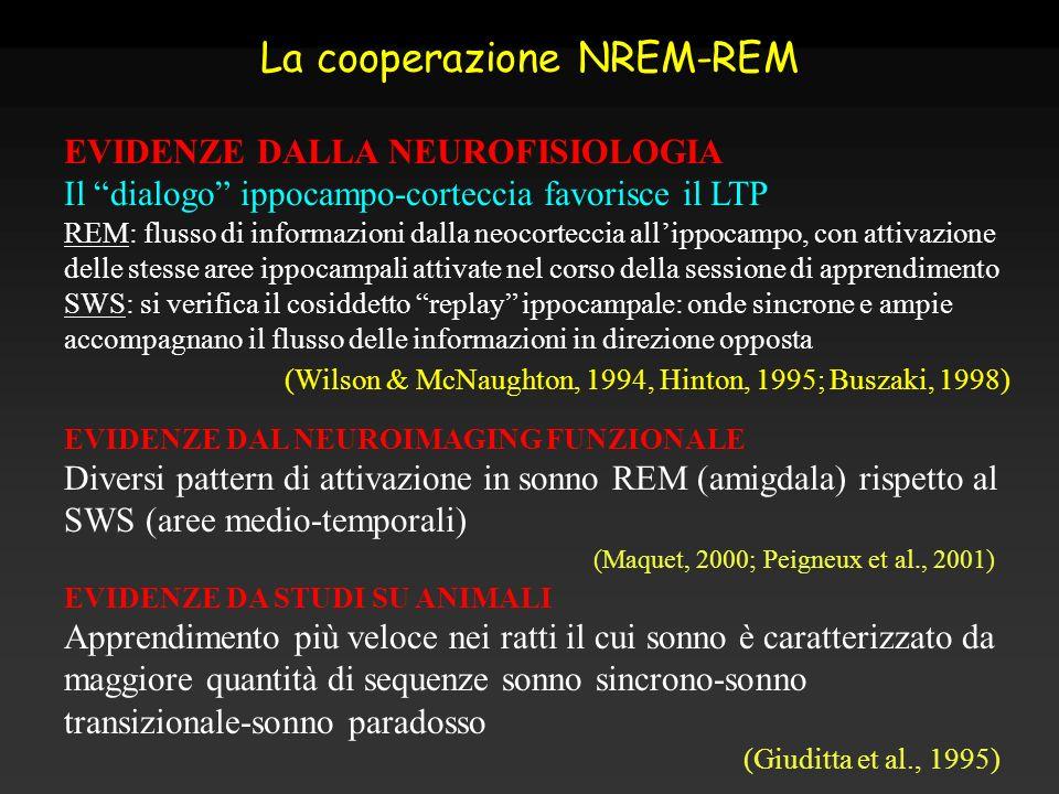 La cooperazione NREM-REM EVIDENZE DALLA NEUROFISIOLOGIA Il dialogo ippocampo-corteccia favorisce il LTP REM: flusso di informazioni dalla neocorteccia