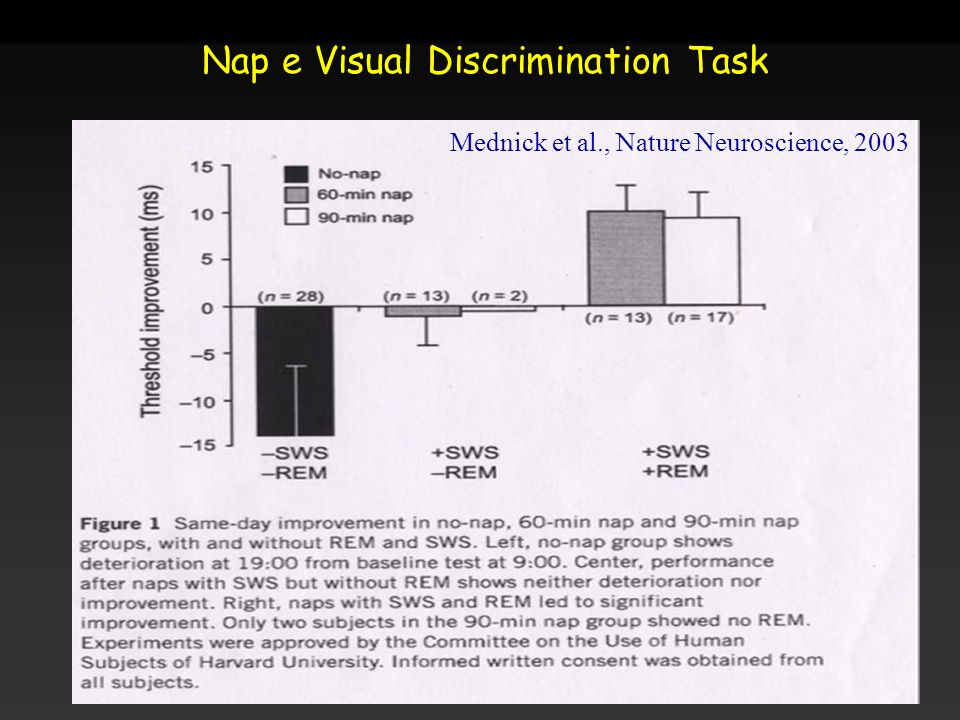 Mednick et al., Nature Neuroscience, 2003 Nap e Visual Discrimination Task