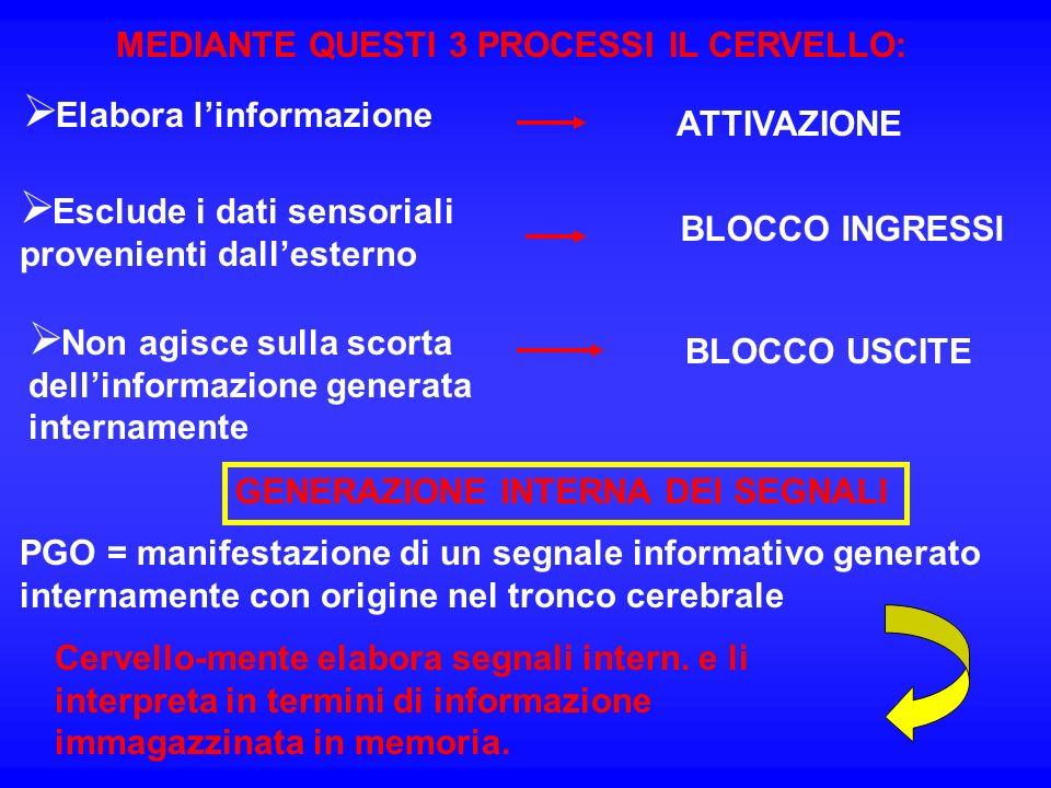MEDIANTE QUESTI 3 PROCESSI IL CERVELLO: Elabora linformazione ATTIVAZIONE Esclude i dati sensoriali provenienti dallesterno BLOCCO INGRESSI Non agisce